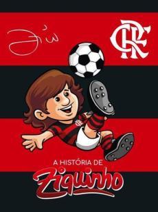 capa do livro a historia de ziquinho