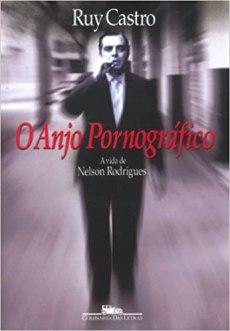 capa do livro o anjo pornografico
